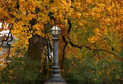 Photograph - Fall Color With Lamppost by Patricia Strand