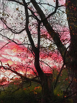 Photograph - Fall Colored Clouds Through Trees by Robert J Sadler