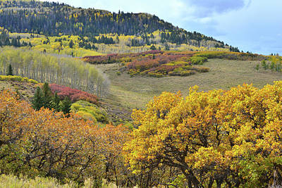 Photograph - Fall Colored Hillsides Above Last Dollar Road by Ray Mathis