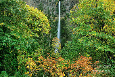 Photograph - Fall Colored Maple Trees Multnomah Falls Columbia Rive by Dave Welling