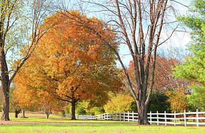 Photograph - Fall Colors 497 - Original Photo by Ericamaxine Price