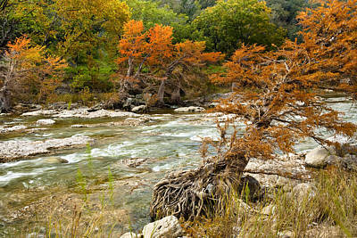 Texas Photograph - Fall Colors Along The Pedernales River by Mark Weaver