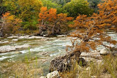 Fall Colors Along The Pedernales River Art Print by Mark Weaver