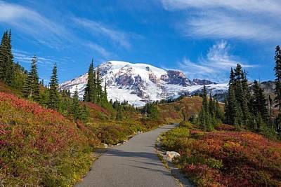 Photograph - Fall Colors Along The Trail by Lynn Hopwood