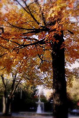 Fall Colors And Fountain Art Print by Martin Morehead