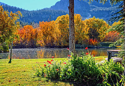 Fall Photograph - Fall Colors And Poppies At The Pond by Lynn Bauer