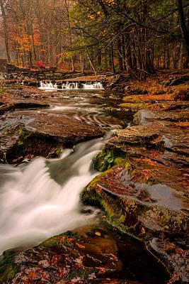 Fall Colors Around The Stream Art Print