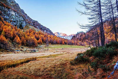 Photograph - Fall Colors At Alpe Devero by Roberto Pagani