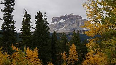 Photograph - Fall Colors At Chief Mountain, Northside by Tracey Vivar