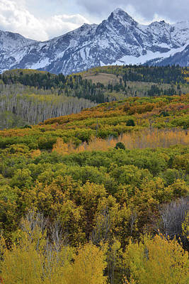 Photograph - Fall Colors At Dallas Divide by Ray Mathis