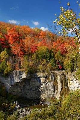 Beaver Photograph - Fall Colors At Eugenia Falls On The Beaver River Ontario Canada by Reimar Gaertner