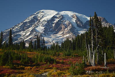 Photograph - Fall Colors At Mt. Rainier by Michael Merry
