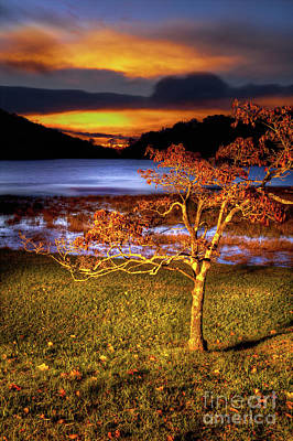 Photograph - Fall Colors At Sunrise In Otter Blue Ridge by Dan Carmichael