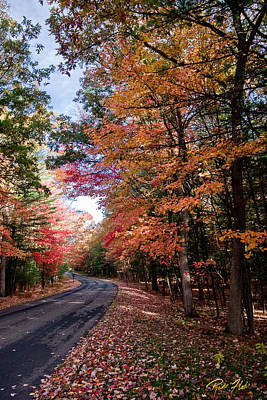 Photograph - Fall Colors Backroad by Rikk Flohr