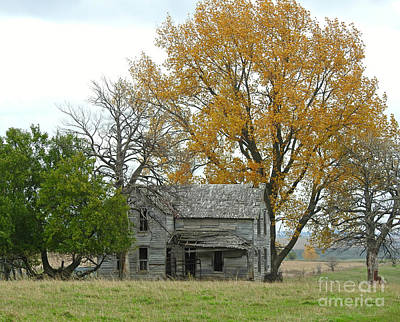 Photograph - Fall Colors Brighten A Deserted Home by Kathy M Krause