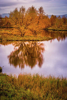 Photograph - Fall Colors by Chris McKenna