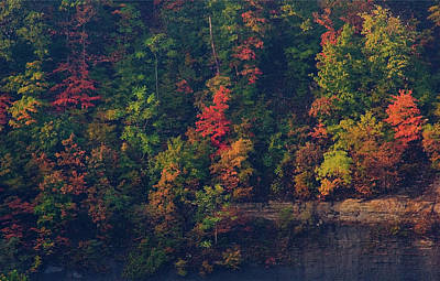 Digital Art - Fall Colors by Christopher Meade