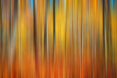 Photograph - Fall Colors Digital Abstracts by Rich Franco