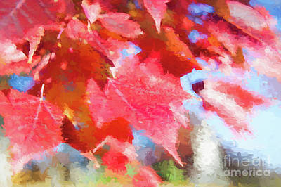 Digital Art - Fall Colors by Ed Taylor