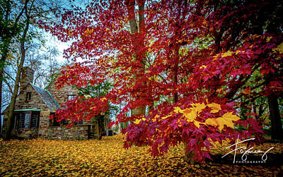 Photograph - Fall Colors by Francisco Gomez