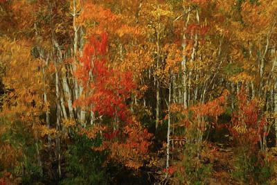 Mesa Digital Art - Fall Colors Grand Mesa Da by Ernie Echols