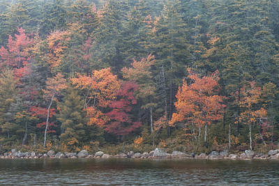 Photograph - Fall Colors In Acadia National Park Maine Img6483 by Greg Kluempers