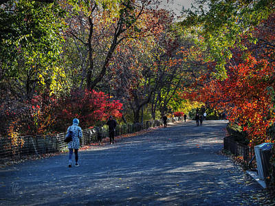 Photograph - Fall Colors In Central Park 001 by Lance Vaughn