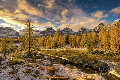 Photograph - Fall Colors In The Canadian Rockies Larch Valley by Mike Reid