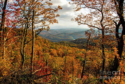 Photograph - Fall Colors In The Cherokee National Forest by Barbara Bowen