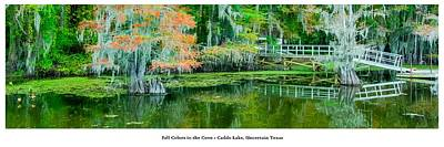 Wall Art Photograph - Fall Colors In The Cove by Geoff Mckay