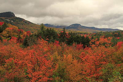 Photograph - Fall Colors In White Mountains New Hampshire by Dan Sproul