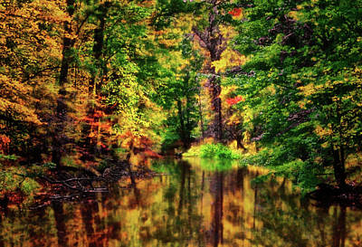 Photograph - Fall Colors - Mountain Stream 016 by George Bostian