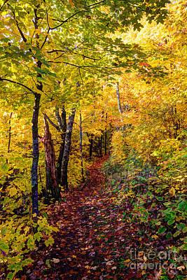 Fall Colors Oberg Mountain North Shore Minnesota Art Print by Wayne Moran