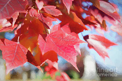 Digital Art - Fall Colors Oil by Ed Taylor
