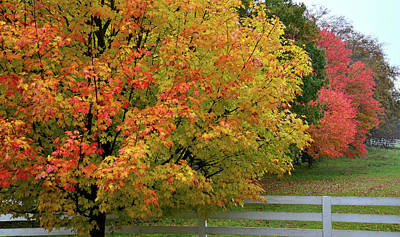 Photograph - Fall Colors On Bull Valley Farm by Ray Mathis