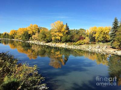 Photograph - Fall Colors On The Bank Of Bow River In Calgary by Akshay Thaker-PhotOvation