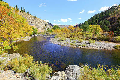 Fall Colors On The Poudre Art Print