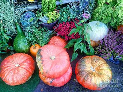 Photograph - Fall Colors Pumpkins And Gords 4 by Edward Sobuta