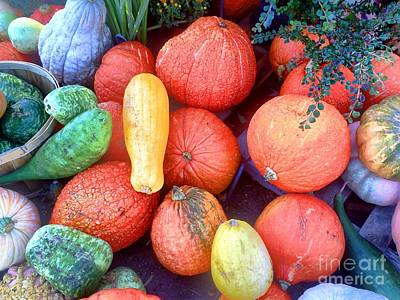 Photograph - Fall Colors Pumpkins And Gords 6 by Edward Sobuta