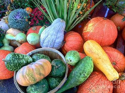 Photograph - Fall Colors Pumpkins And Gords 1 by Edward Sobuta
