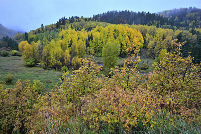 Photograph - Fall Comes To Dallas Creek Road by Ray Mathis