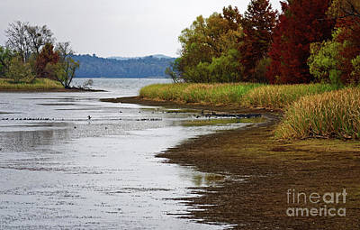 Photograph - Fall Comes To The Hiwassee Refuge by Paul Mashburn