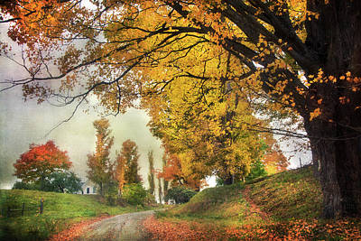 Photograph - Fall Country Road In Vermont by Joann Vitali