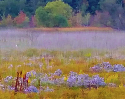 Fall Cowles Bog Wildflowers Indiana Dunes National Lakeshore 11 X 14 Print Original by Richard Ackerman