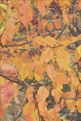 Digital Art - Fall Crabapple Leaves by Donna L Munro