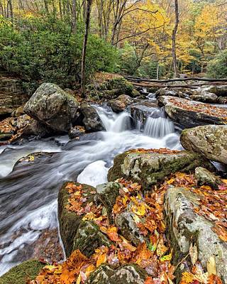Photograph - Fall Creek by Alan Raasch