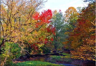 Fall Creek Print by Brittany H