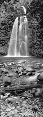 Photograph - Fall Creek by Leland D Howard
