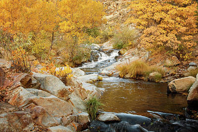Digital Art - Fall Creek by Ramona Murdock