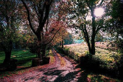 Photograph - Fall Daybreak by Ronda Ryan
